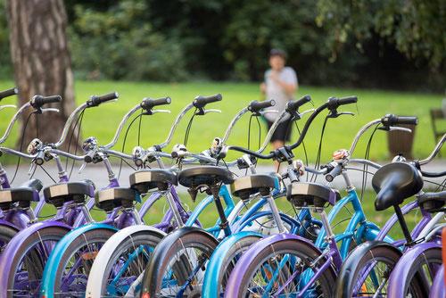 La location de vélos au camping Gastes Babou'loc